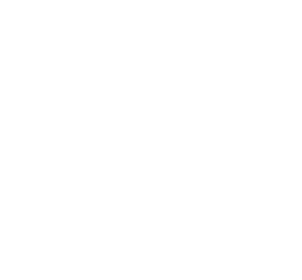 Green Arts Initiative
